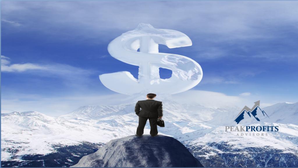business-profits-can-be-maximized-wiih-peak-profits-advisors